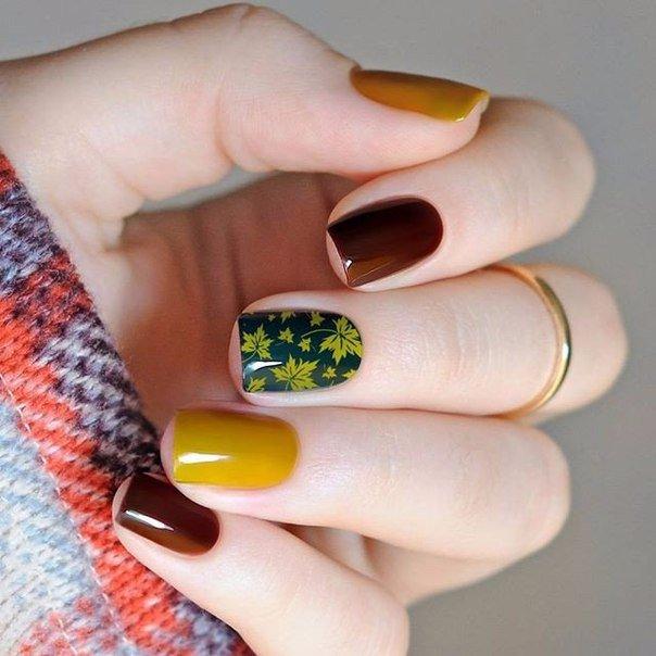 ногти шеллак фото 2016 осень