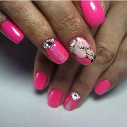 Птицы на ногтях фото